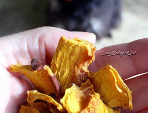 Dried Pumpkin Dog Treats