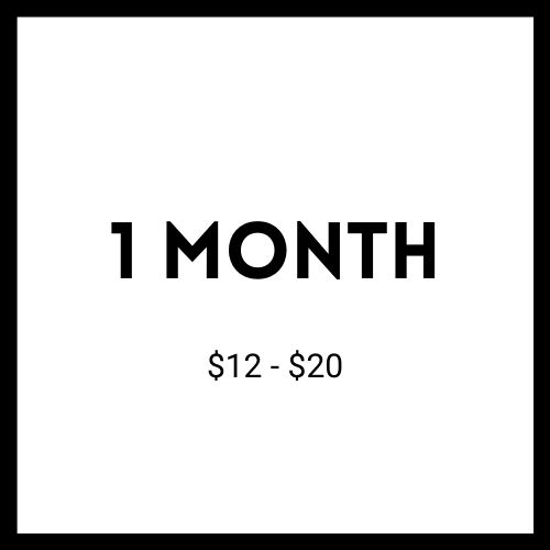 One Month Dog Bandana Subscription