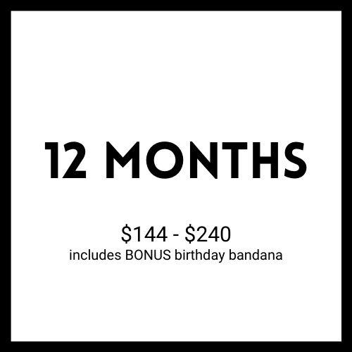 Twelve Month Dog Bandana Subscription